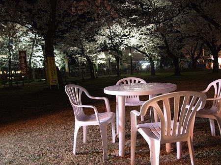 桜とテーブルとイス